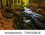 amazing colorful autumn scene... | Shutterstock . vector #734510818