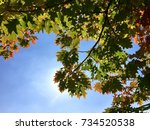 autumn leaves on sky background | Shutterstock . vector #734520538
