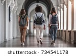 back view of beautiful young... | Shutterstock . vector #734541178