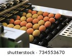 automated sorting of raw and... | Shutterstock . vector #734553670