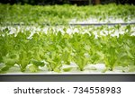 modern agricultural plant... | Shutterstock . vector #734558983