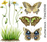 hand painted watercolor...   Shutterstock . vector #734635048