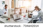 two scientists are working in... | Shutterstock . vector #734642014