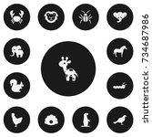 set of 13 editable zoology...