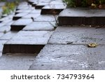 Small photo of Wet Angled Bluestone Steps with Moss and Weeds