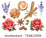 set of watercolor elements for... | Shutterstock . vector #734812504