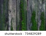 old fence overgrown with green... | Shutterstock . vector #734829289