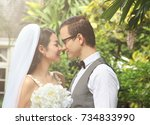 pre wedding couple   beautiful... | Shutterstock . vector #734833990