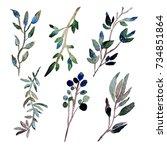 decorative watercolor leaves... | Shutterstock . vector #734851864