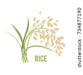 ears of rice isolated on white... | Shutterstock .eps vector #734877190