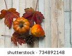 Flat Lay  Autumn Scene  Red...