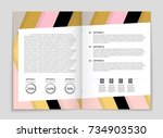 abstract vector layout... | Shutterstock .eps vector #734903530