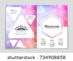 abstract vector layout... | Shutterstock .eps vector #734908858