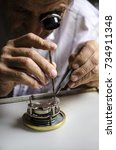 old watchmaker at work | Shutterstock . vector #734911348
