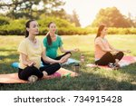pregnancy yoga. three pregnant... | Shutterstock . vector #734915428