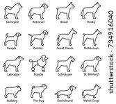dogs breed set. linear design.... | Shutterstock .eps vector #734916040