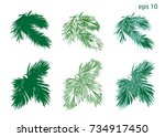 set vector christmas tree...   Shutterstock .eps vector #734917450