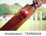 cricket batsman hitting a ball... | Shutterstock . vector #734986546