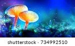 mushroom. fantasy glowing... | Shutterstock . vector #734992510