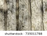 rough white withered natural... | Shutterstock . vector #735011788