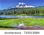 reflection lake mount rainier... | Shutterstock . vector #735013084