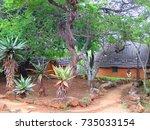 zululand   south africa   circa