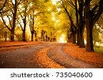autumn  landscape background.... | Shutterstock . vector #735040600