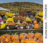 Country Farm Stand With Autumn...