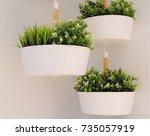 artificial green plants in a...   Shutterstock . vector #735057919
