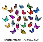 Stock photo big set monarch butterfly isolated on white background 735062569