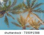 vintage tone of coconut tree...   Shutterstock . vector #735091588
