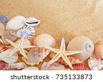 Seashells And Sea Stars On Sand ...