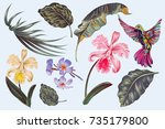 tropical flowers  jungle leaves ... | Shutterstock .eps vector #735179800
