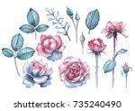 cute watercolor collection of... | Shutterstock . vector #735240490