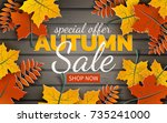 Autumn Sale Banner  Paper...