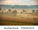 foggy outback mountain dirt... | Shutterstock . vector #735243214