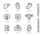 internal human organs icons set.... | Shutterstock .eps vector #735260179