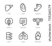 internal human organs icons set.... | Shutterstock .eps vector #735260179