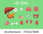 cute organ set  vector image | Shutterstock .eps vector #735267808
