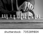 monochrome image of a... | Shutterstock . vector #735289804