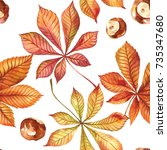 autumn leaves on white... | Shutterstock . vector #735347680