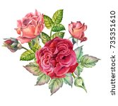 watercolor red roses | Shutterstock . vector #735351610