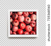 realistic square photo frame... | Shutterstock .eps vector #735368560