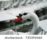 swan boats ride paddle in lake... | Shutterstock . vector #735393460