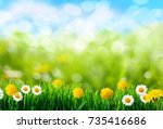 green grass and spring flowers... | Shutterstock . vector #735416686