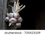 Bunch Of Fresh Garlics