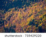 autumn forest pattern with... | Shutterstock . vector #735429220