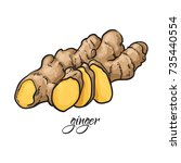 hand drawn fresh ginger root... | Shutterstock .eps vector #735440554