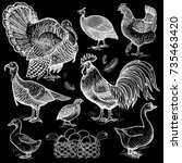 poultry set. birds rooster ... | Shutterstock .eps vector #735463420