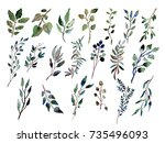 decorative watercolor leaves... | Shutterstock . vector #735496093